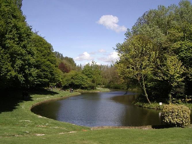 Coudekerque village Bois des forts
