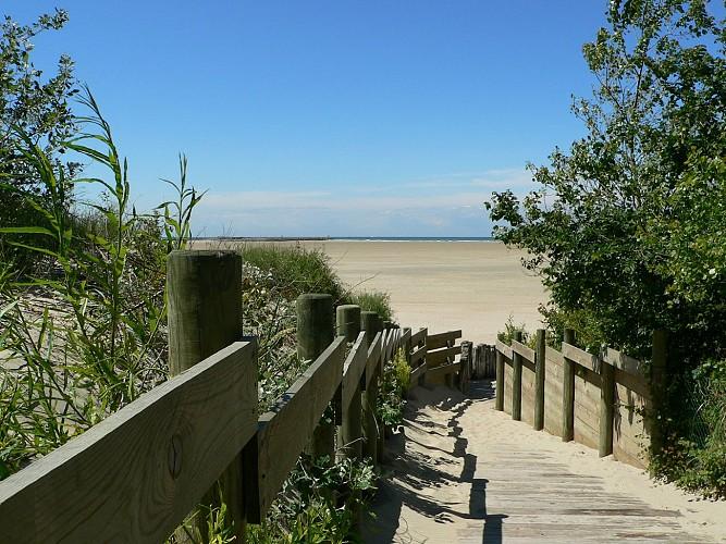 Gravelines plage