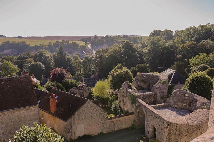 Boucle de Pithiviers à Yèvre-le-Châtel