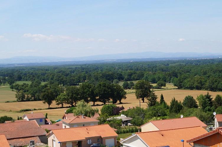 Saint Cyr les Vignes - Entre plaine et monts