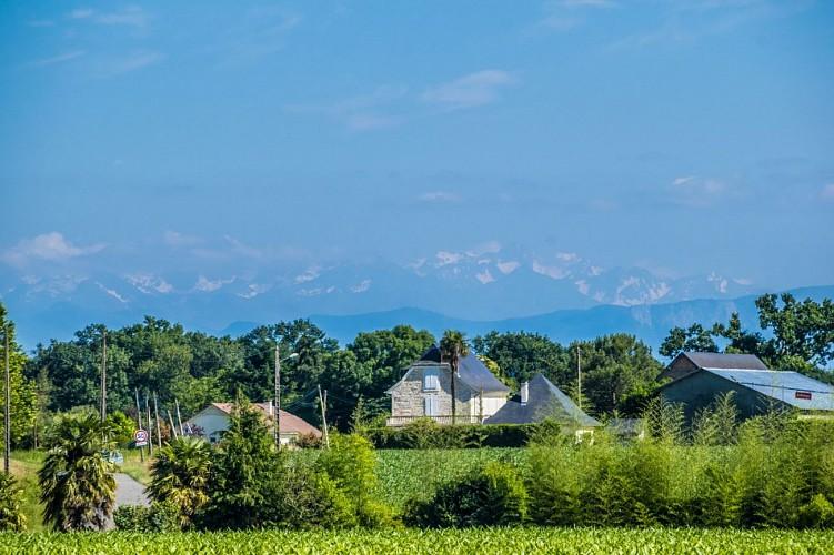 Uzein - Autour du Luy de Béarn