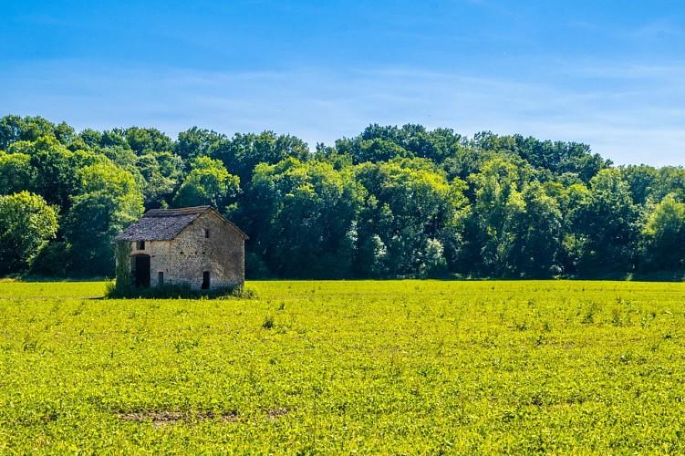 Poey-de-Lescar - La Vallée de l'Ousse