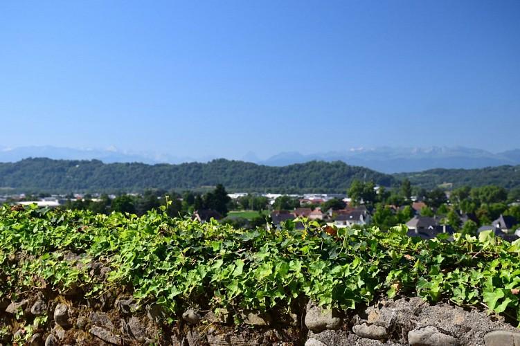 Lescar, capitale historique du Béarn (Balade urbaine)