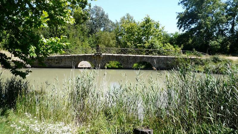RANDONNÉE QUARANTE LES BERGES DU CANAL