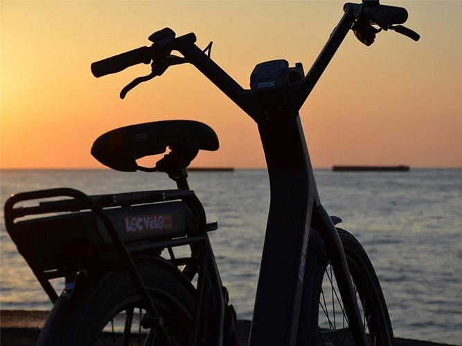 Petite Reine Tours Privés - Balade à vélo en Normandie