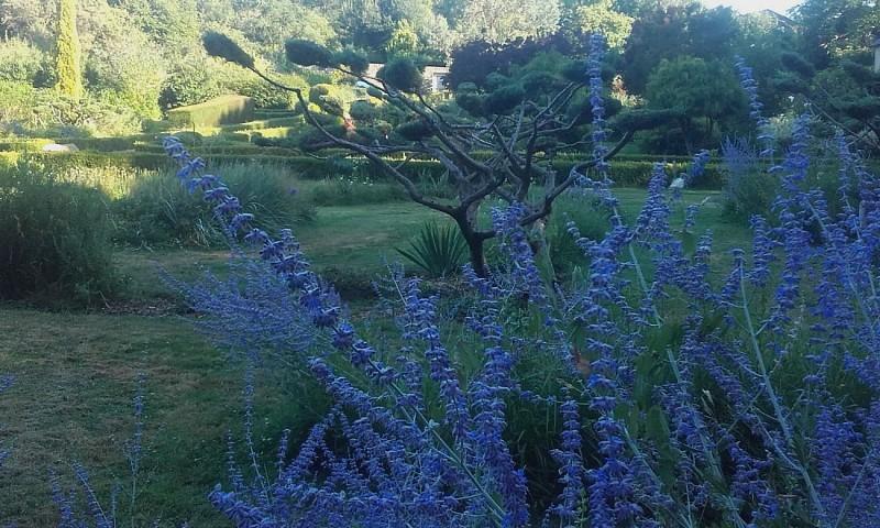 nueil-les-aubiers-chambre-dhotes-le-frene-chabot-2-pers-jardin