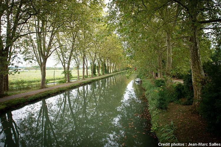 Domaine-Quiescis--Marcellus---jardin