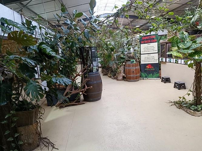 Exotic Park - Lescar - papillon