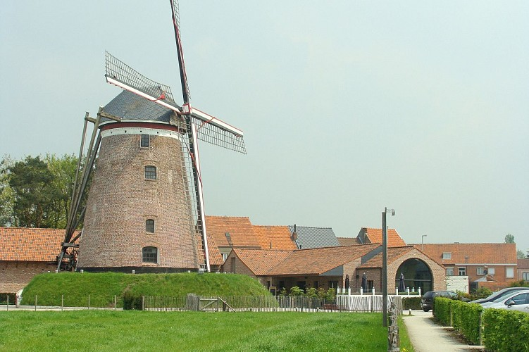 Windmolen 'Grote Napoleon' Hamme