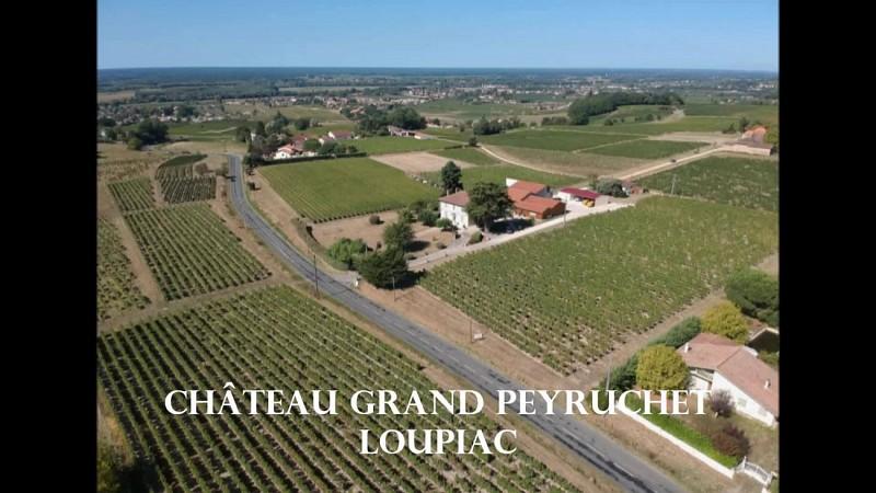 Château Peyruchet