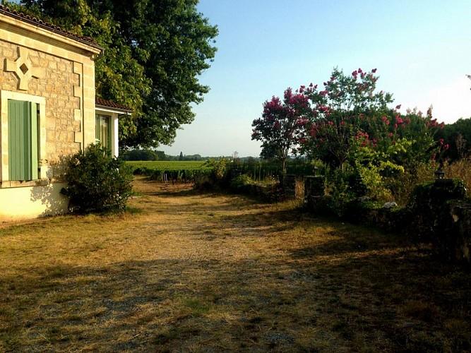 Domaine de la gauche Aire CC - BOMMES - Sud-Gironde