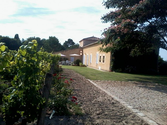 Domaine de Roussanne CC - SAUTERNES - Sud-Gironde