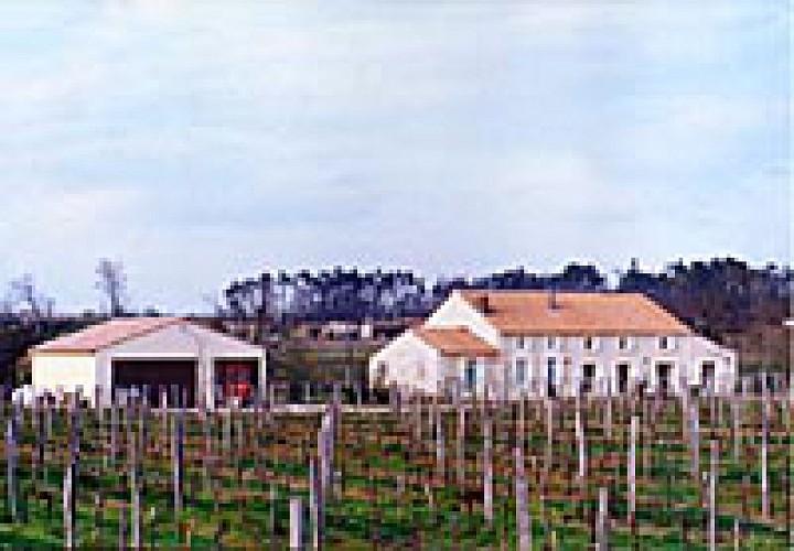 Marcillac - Domaine de Tout L'Y Faut