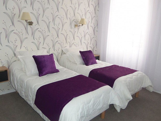 Hôtel-Les-Platanes3