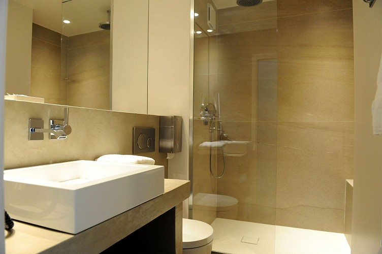 Salle-de-bain Chambre double--460
