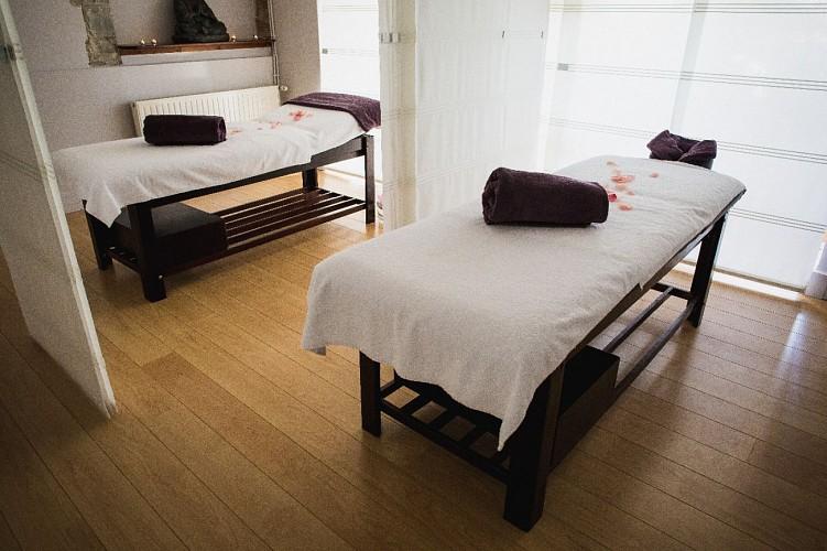 Hôtel Villa Navarre - Pau - Spa