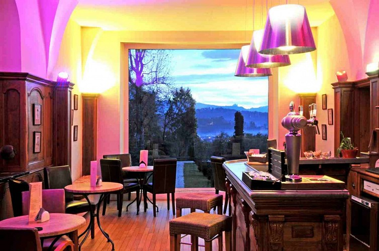 Hôtel Villa Navarre - Pau - Bar