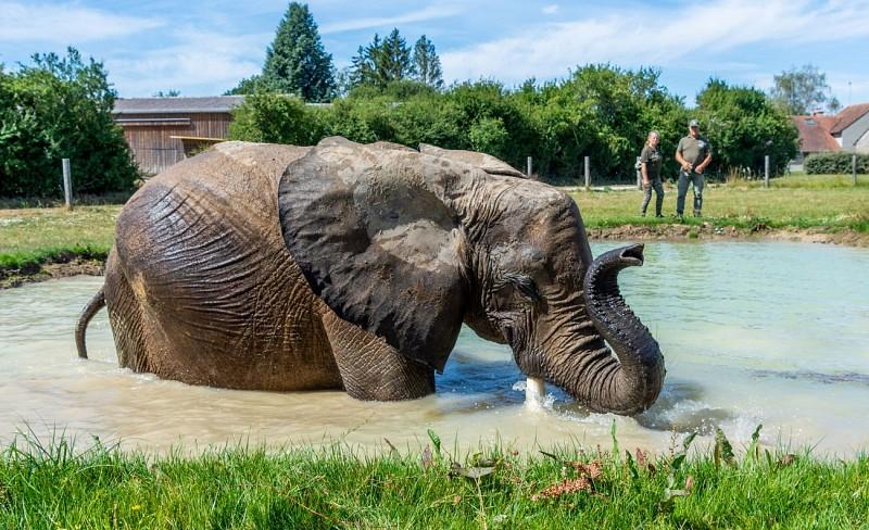 Animal-Contact---Tourisme-Loiret---Credit-Photo-IOA-production---Sebastien-Richard--68-