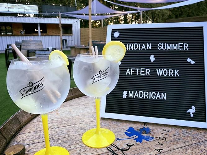 Restaurant Le Madrigan - Pau - gin tonic