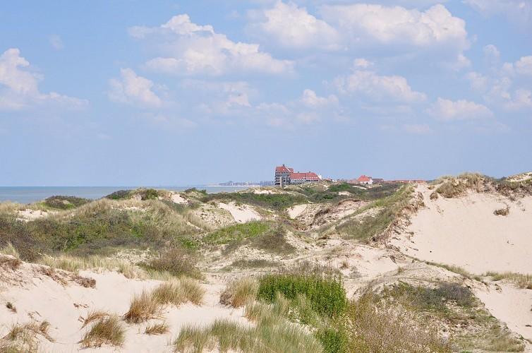 Zuydcoote - Réserve Naturelle de la Dune Marchand
