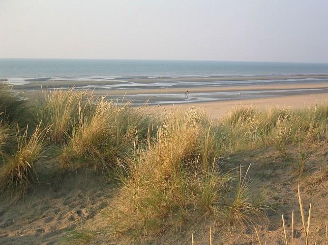 Leffrinckoucke - La Dune Dewulf