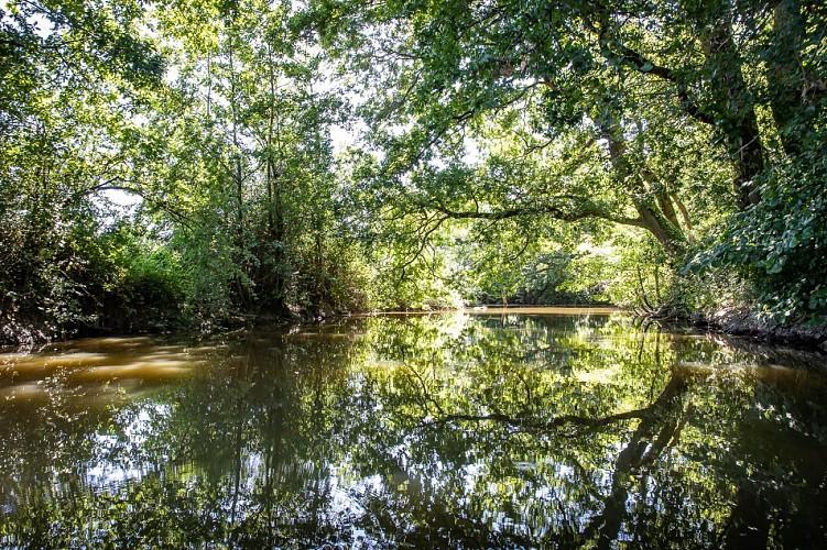 LE CANAL DE HAUTE-PERCHE