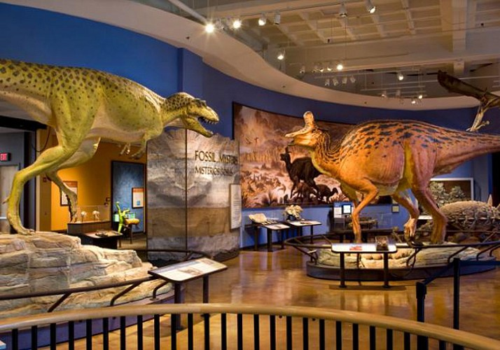 Natural History Museum - San Diego