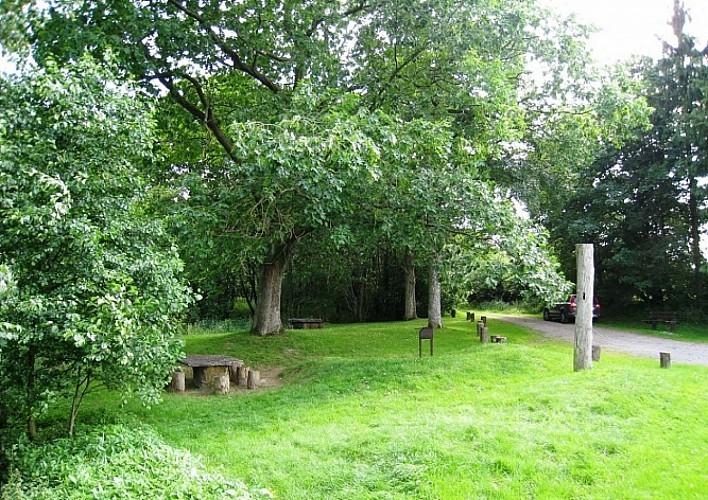 Onze tip: het natuurreservaat Ry d'Oeure,