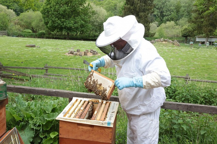 Val d'Essonne beekeeper society