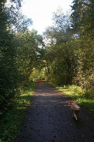 Our top tip: the RAVeL foot- and cycle path