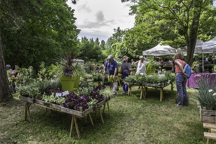 La Fête des plantes et du jardin au Domaine de Péré