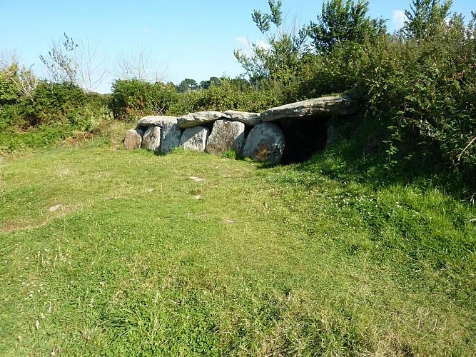 Allée couverte et dolmen de Kerguntuil