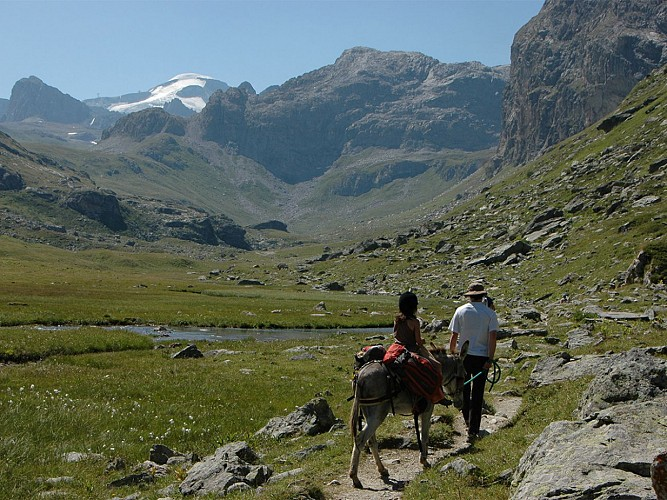 Hike with a donkey and overnight stay in a mountain hut