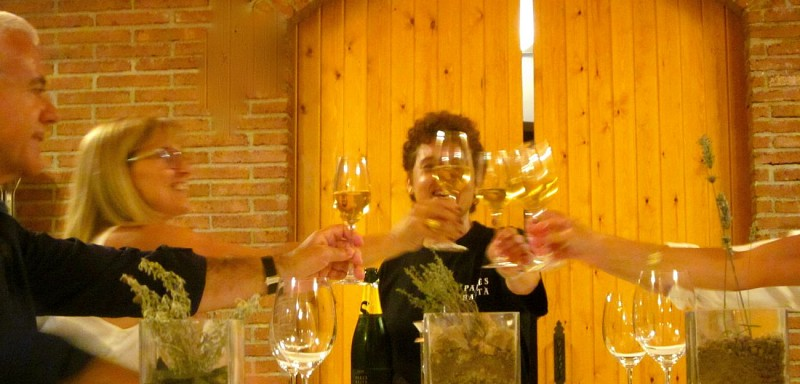 Discover the Catalan Wine-growing Regions and the Human Pyramids – Departing from Barcelona