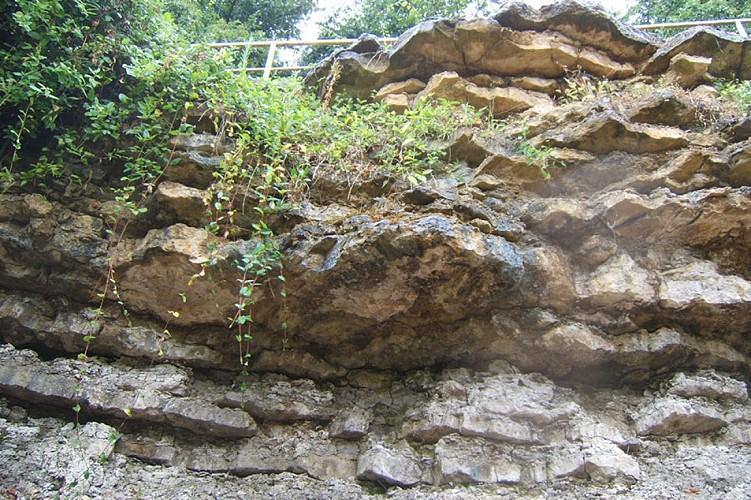 Réserve Naturelle Nationale du Toarcien Thouarsais