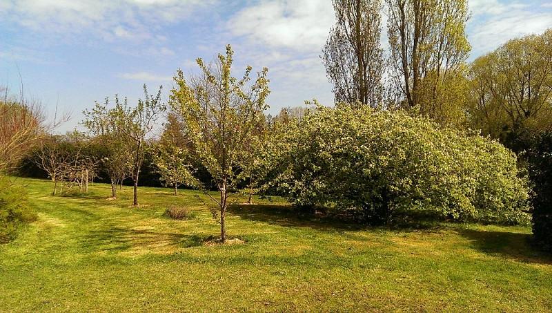 clesse-chambre-dhotes-aux-deux-chevres-jardin1