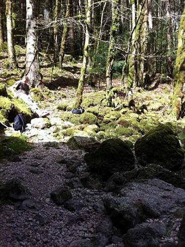 Au bord du Doubs