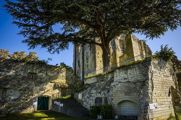 Donjon de Montrichard