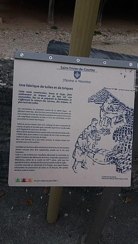 Circuit Discovery of Saint-Trivier-de-Courtes