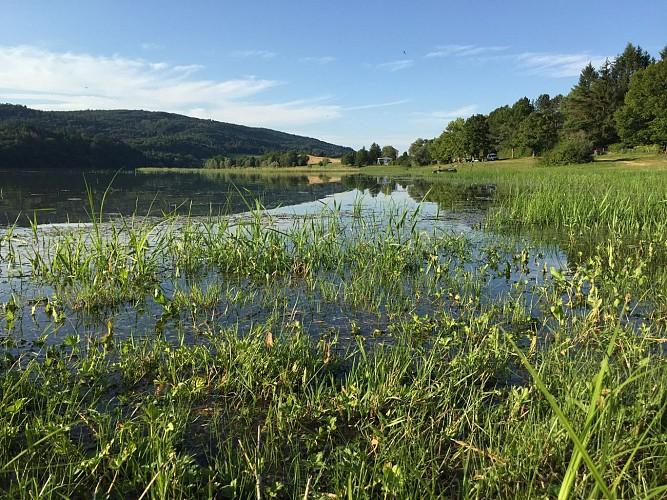 Rivière et lac de l'Oignin