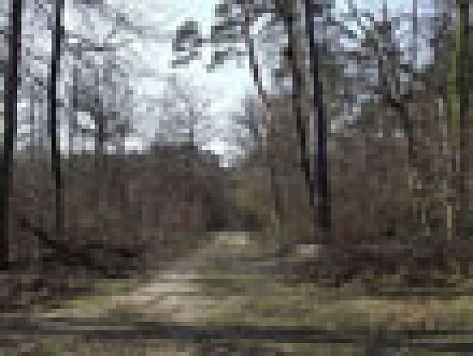 Route de la Fontaine