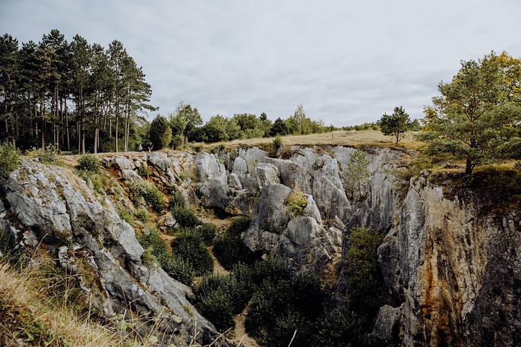 Fondry des Chien au Parc Naturel Viroin-Hemerton à Viroinval