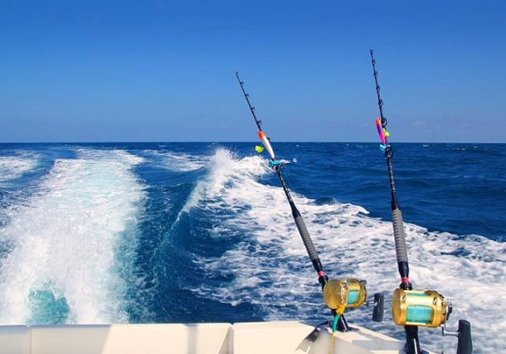 Pêche au gros au large de la Guadeloupe - Au départ de Bouillante