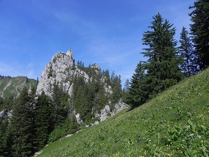 Le Col de Savalène (d'Arvouin)