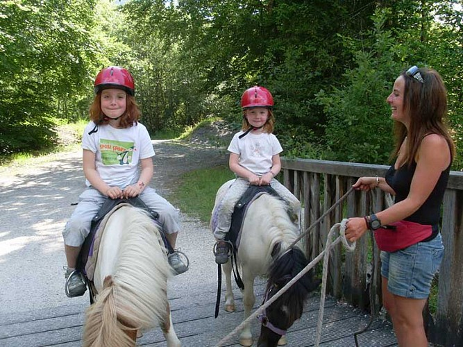 Outings with pony and horse