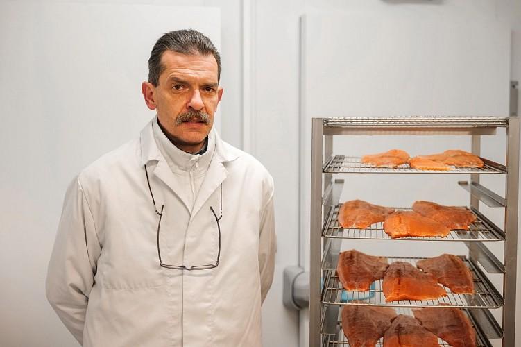 fish-3830310-640