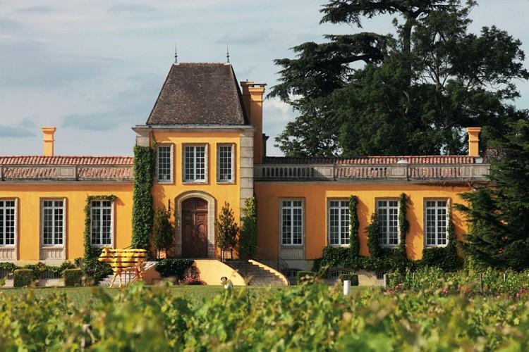 Saint-Estèphe - Château Lafon-Rochet