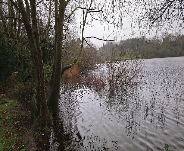 lac marion 3 1440x1180