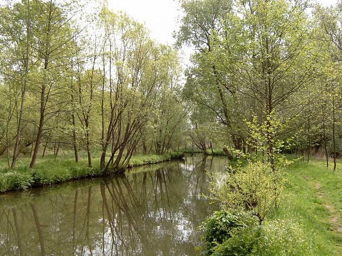 Vallée Gueule 03
