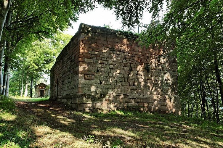 Ruines du Château de Bruyères